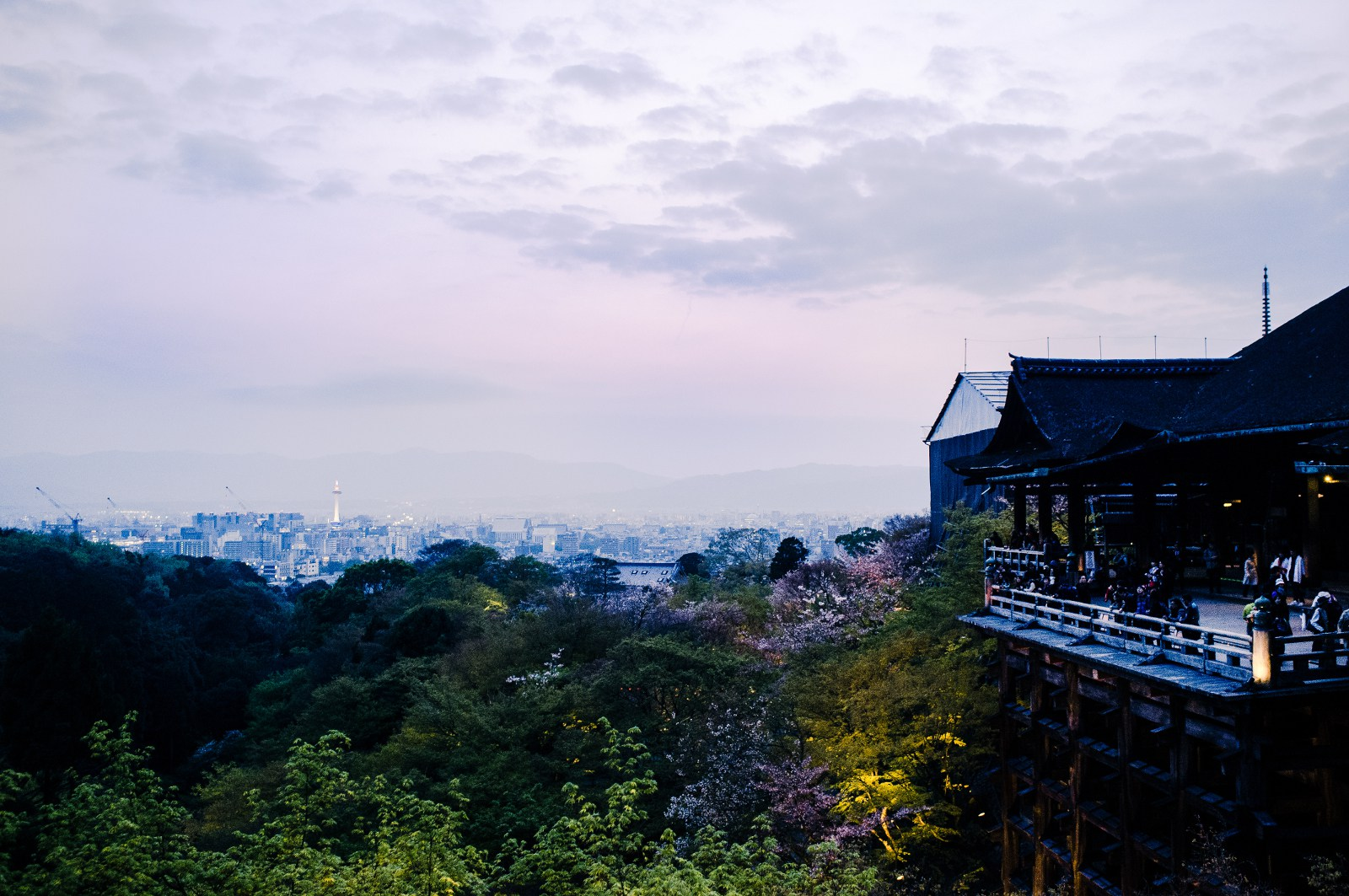 Working Holiday Visa in Kyoto