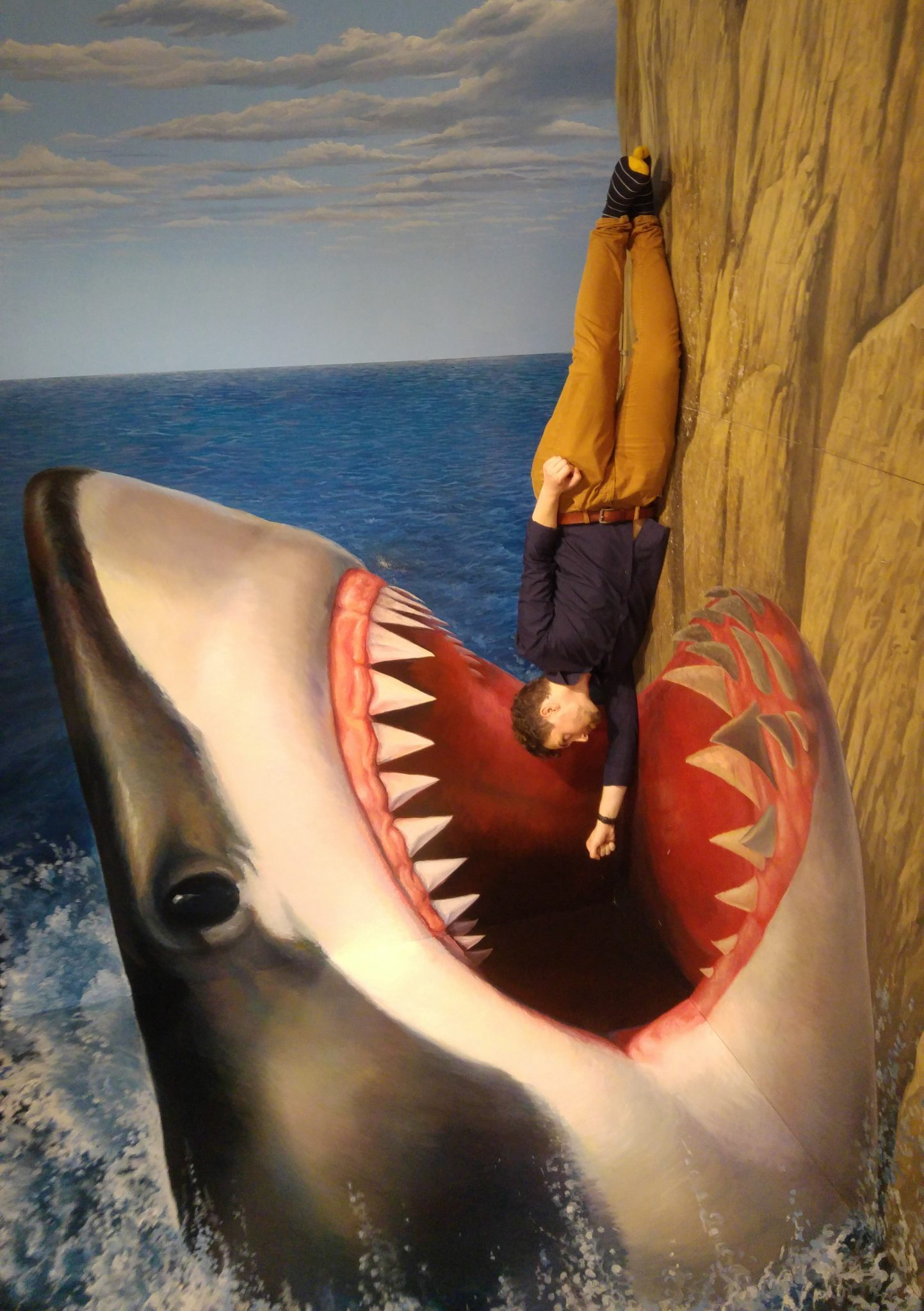 """""""The ninjas taught me everything shark. You do not know it but you are already endangered."""""""