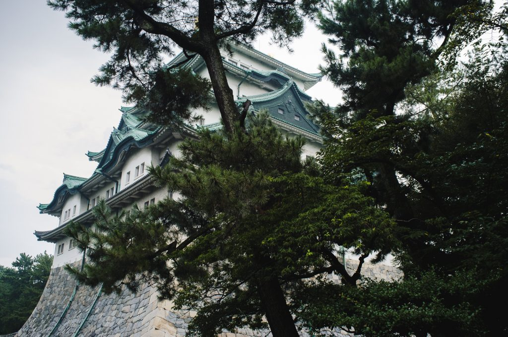 The Nagoya Castle keep behind a tree.