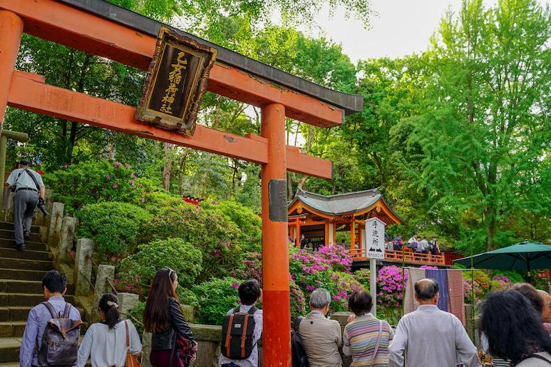 Torii between Nezu Jinja and Otome Inari